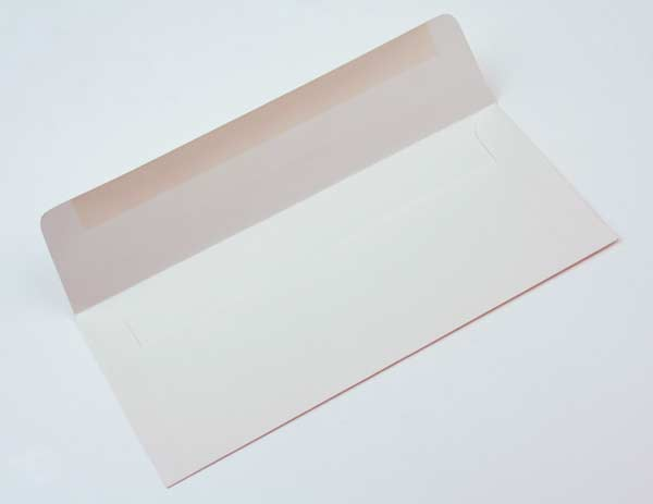 Image of #10 Square FlapPremium Opaque 24.1 x 10.5 cm (50 pieces)